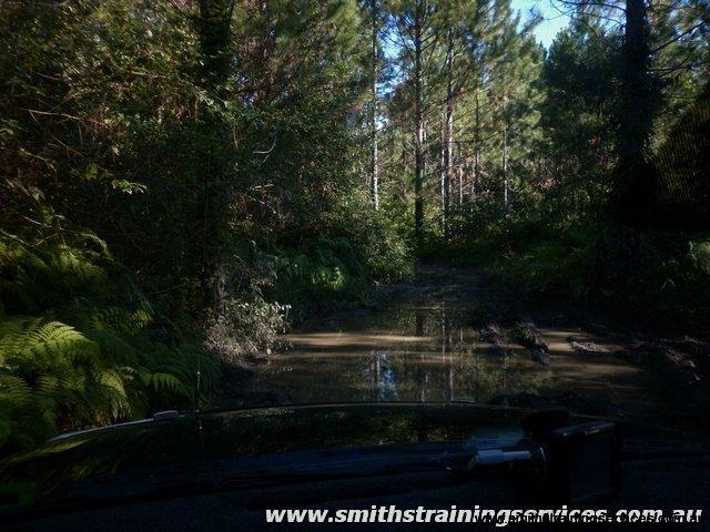 Beerburrum State-forest-2_tn